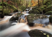 padley-stream-oct25-2012-9777GC2