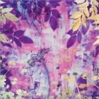 Purple Daisies II