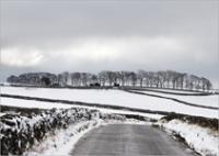Snowy Peaks 8