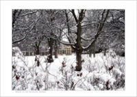 Winter at the Botanic Gardens Farrow Spec