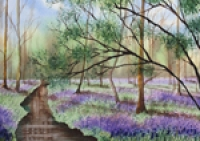 Bluebell Woods By The River v2
