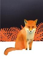 fox f&b