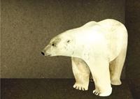 polarbear f&b