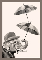 001ELEPHANTBROLLIES